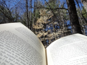 Book in the Woods