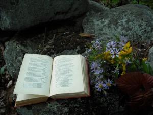 Reading bouquet