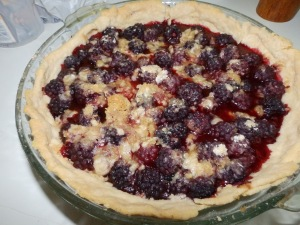 Blackberry Pie lard crust