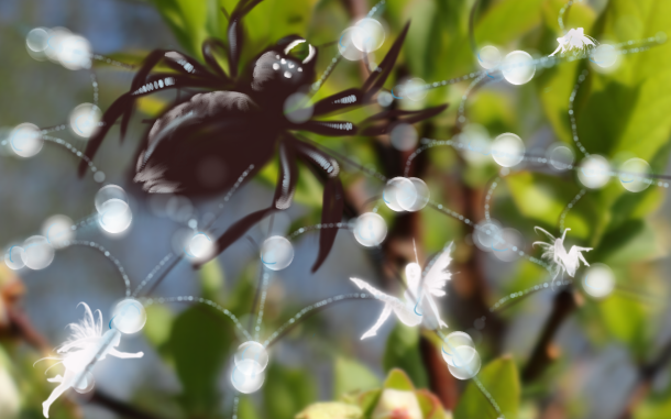 fairies caught by spider