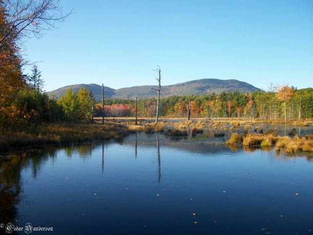 New Hampshire Pond