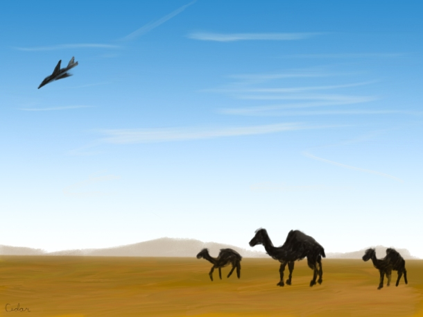 Camel Walk